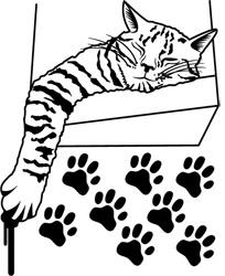 Produit phare chat dormeur