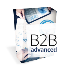 B2b advanced